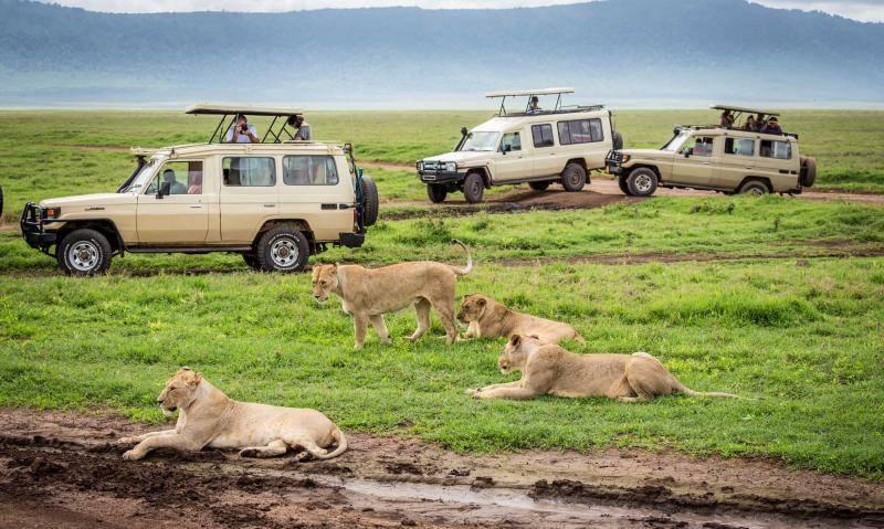 Tanzania Budget Mobile Camping Safari