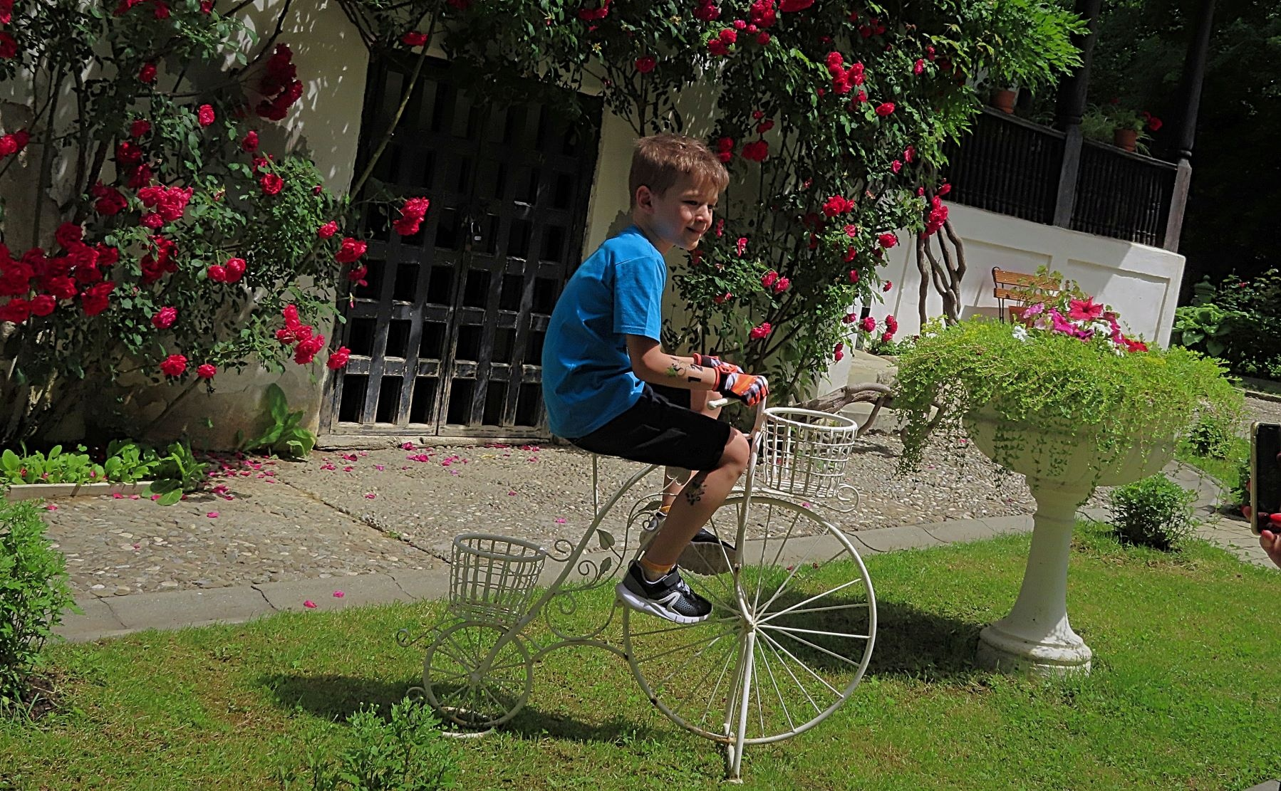 Wine route by bicycle