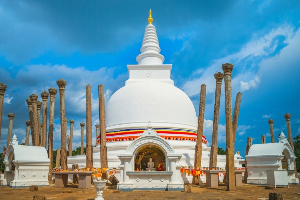Sri Lanka's Ancient Cities & Wildlife Experience