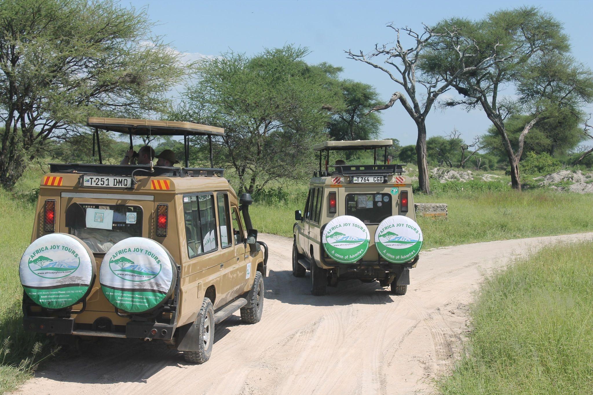 4 Day Tanzania Lodge Safari to Lake Manyara, Serengeti & Ngorongoro Crater
