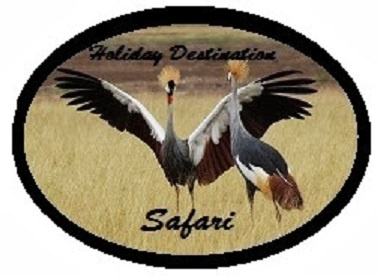 Holiday Destination Safaris