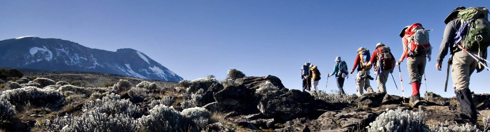 Kilimanjaro 8 Days Lemosho Route
