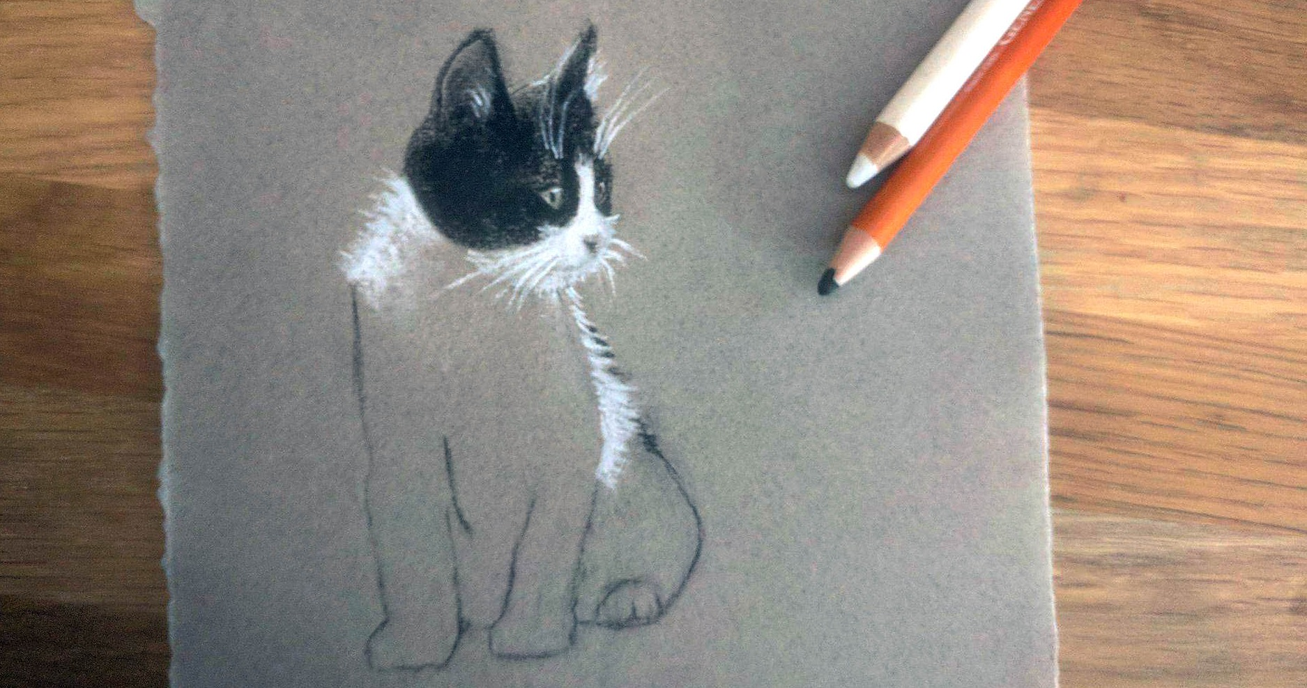 How To Draw Cats Small Online Class For Ages 8 12 Outschool