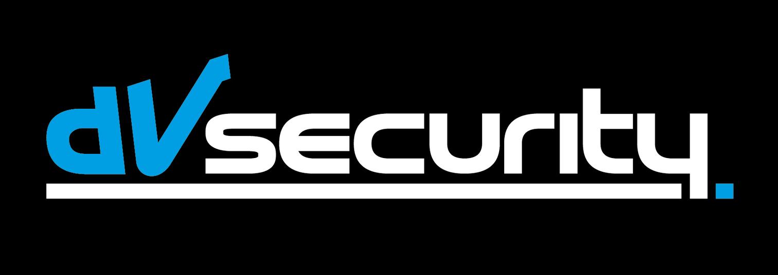 dvsecurity logo