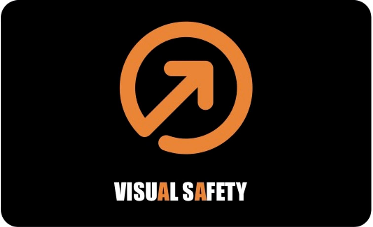 Visual Safety logo