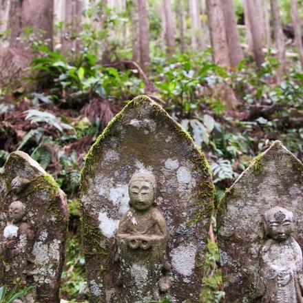 Kumano Kodo self-guided walking (6 Days)