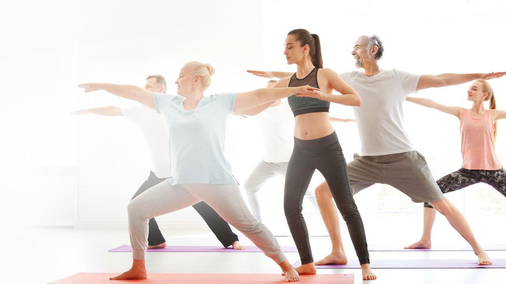 Représentation de la formation : Sport Santé - Niveau 2 - TOMBLAINE - 02/11 au 06/11/2020