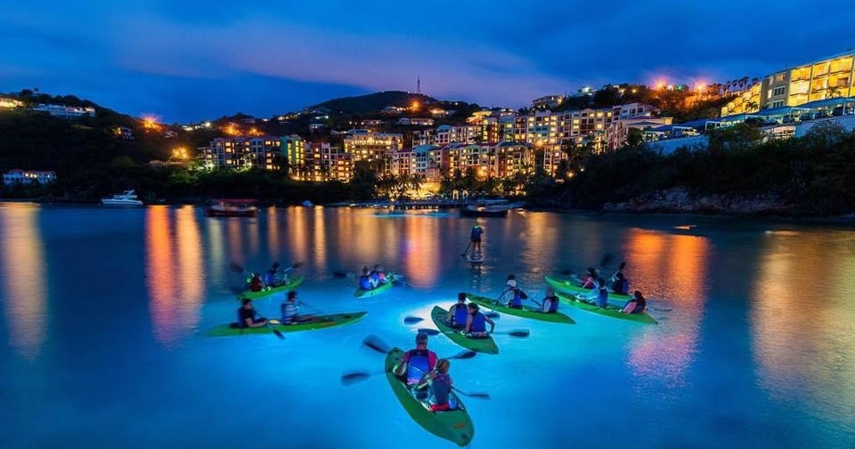 Night Kayak Tour