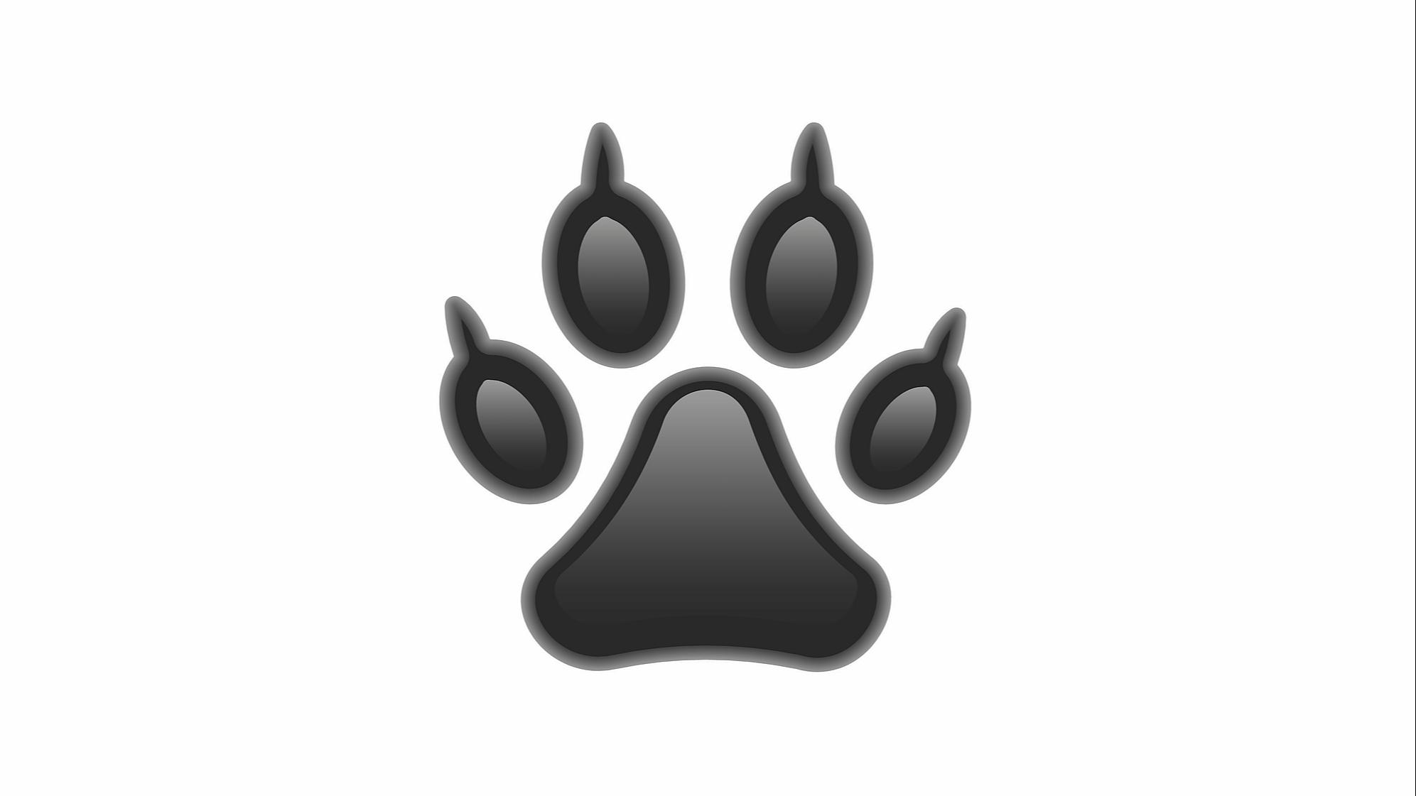 Représentation de la formation : FORMATION RISQUES CANINS - Atelier de prévention canine - 1 jour - Présentiel