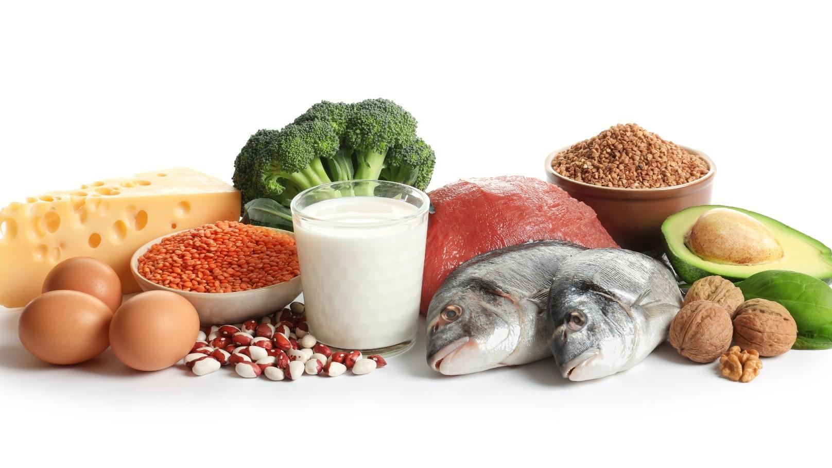 Représentation de la formation : COL02 - Diversifier les aliments sources de protéines pour végétaliser vos menus