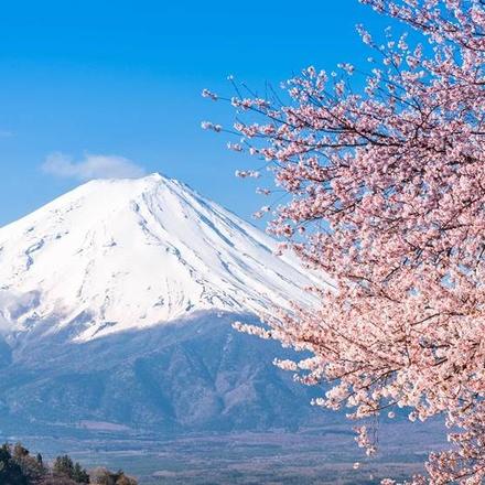 Timeless Japan - 2021