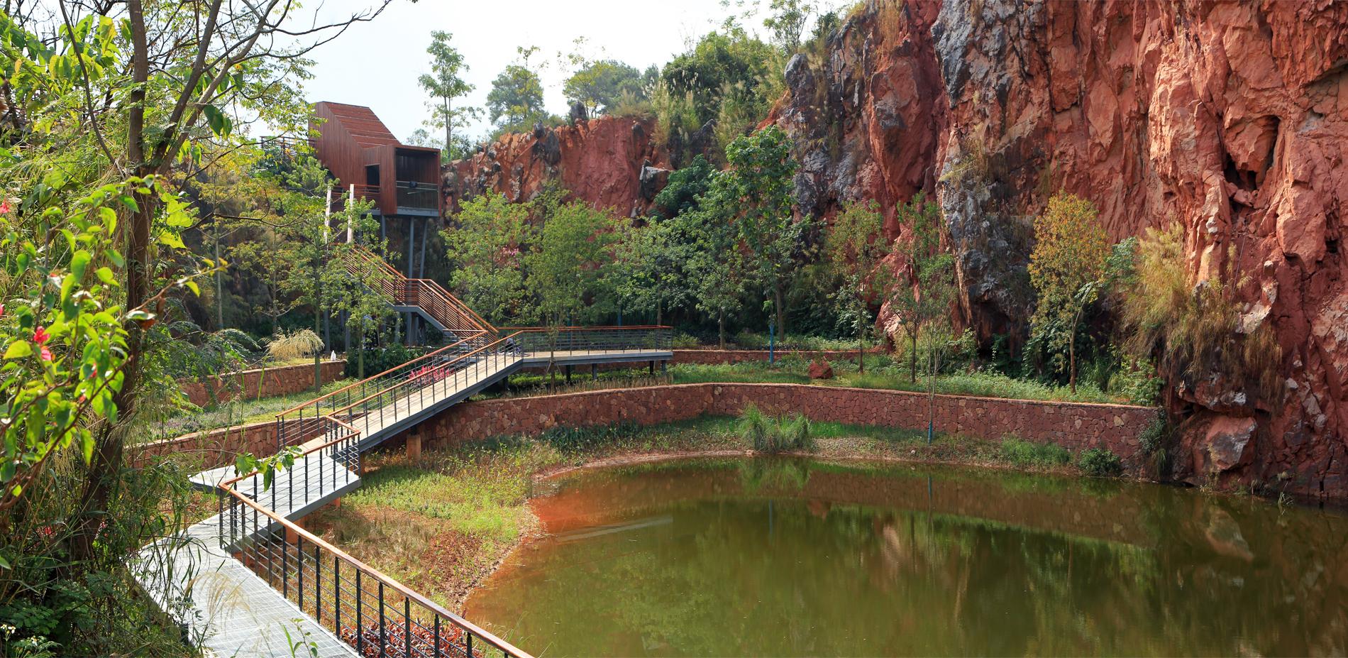 An aquatic garden (Quarry No. 2)