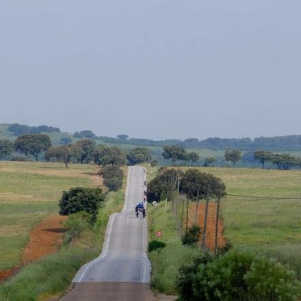 Cycling past cork estates