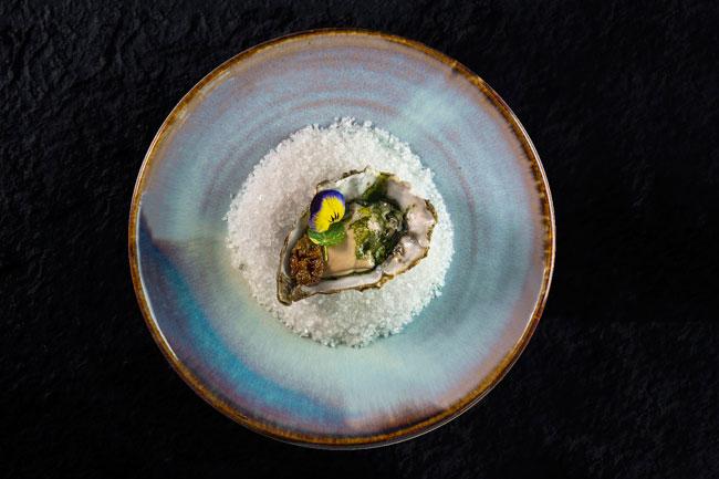 Belon oyster, puntarelle, brine plum