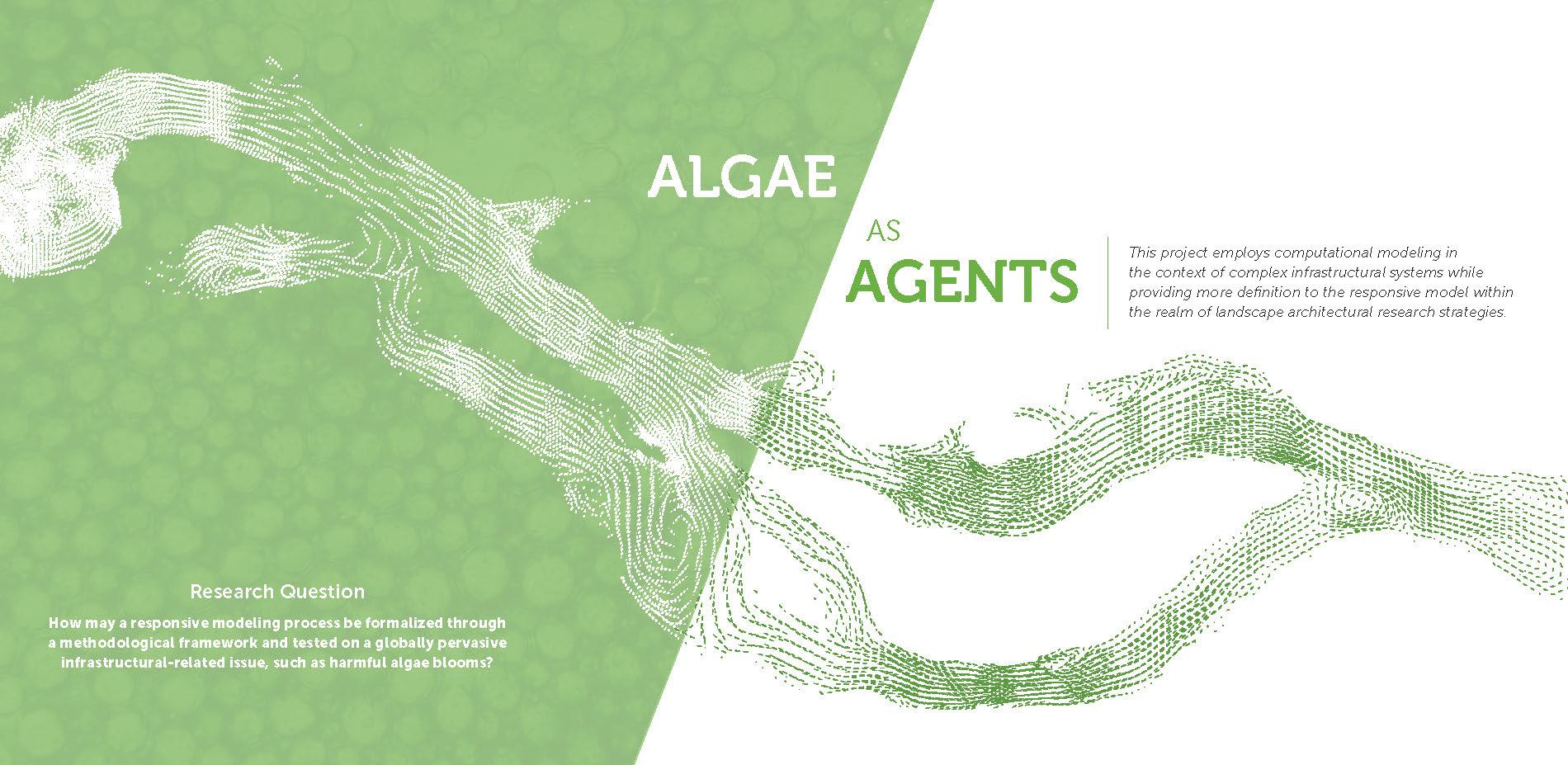 Investigating Algae & Responsive Modeling