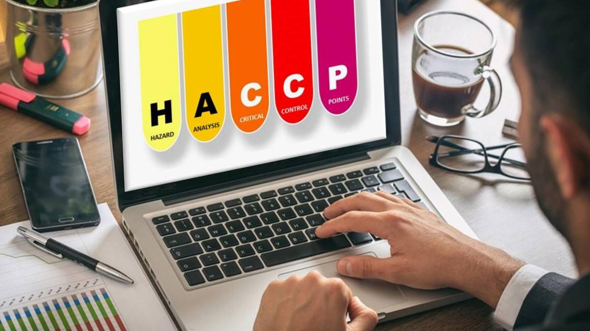 Représentation de la formation : HACCP et Plan de Maîtrise Sanitaire en filière viandes - à distance