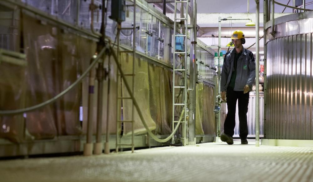 På LignoCity i Bäckhamar utvecklas nya miljövänliga produkter av naturmaterialet lignin. Hit kan du vända dig med dina gröna idéer och få hjälp med dess utveckling.