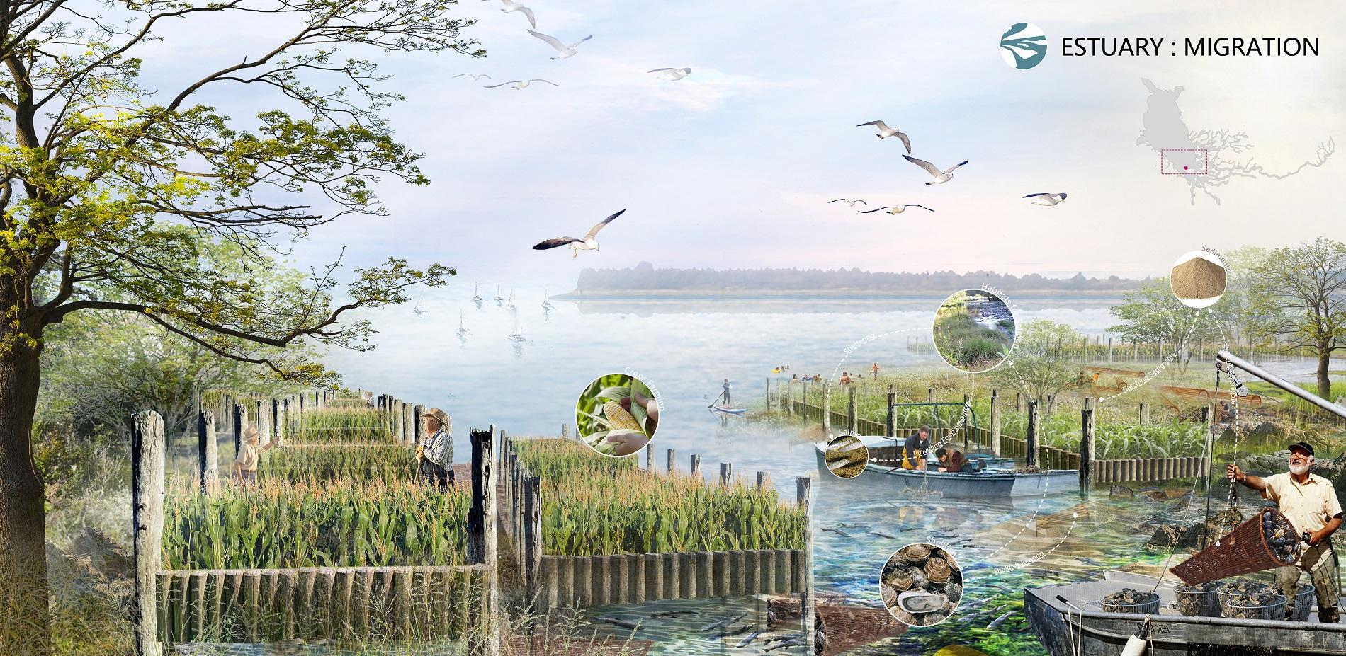 Estuary:migration