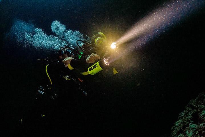 Night Diver Specialty | No Limits Scuba