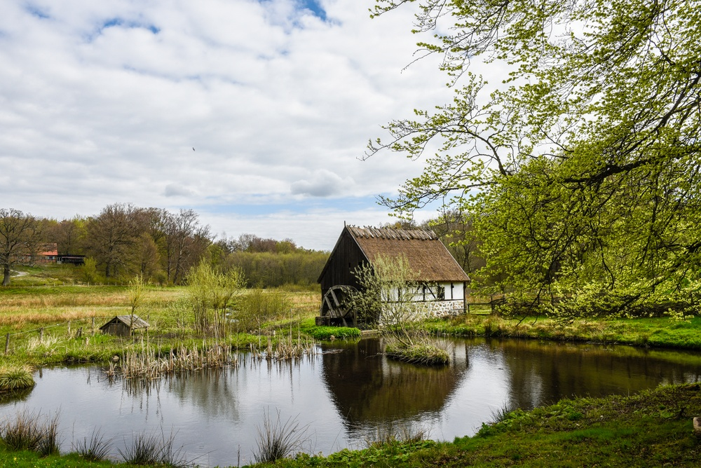Vattenkvarnen på Kulturens Östarp i början av maj. Foto: Viveca Ohlsson/Kulturen