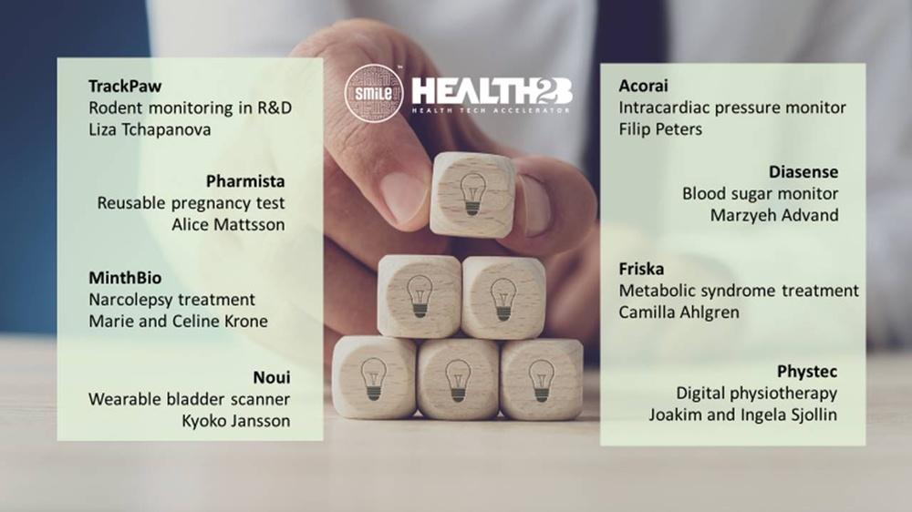 Av över 80 sökande togs följande bolag in och de har nu fullföljt SmiLes Health2B