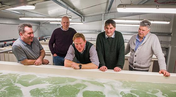 prawns Management team