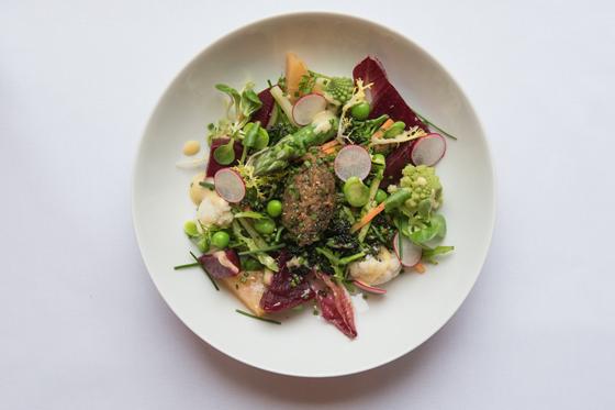 spring-garden-vegetables-salad-with-aubergine-and-pickled-walnut