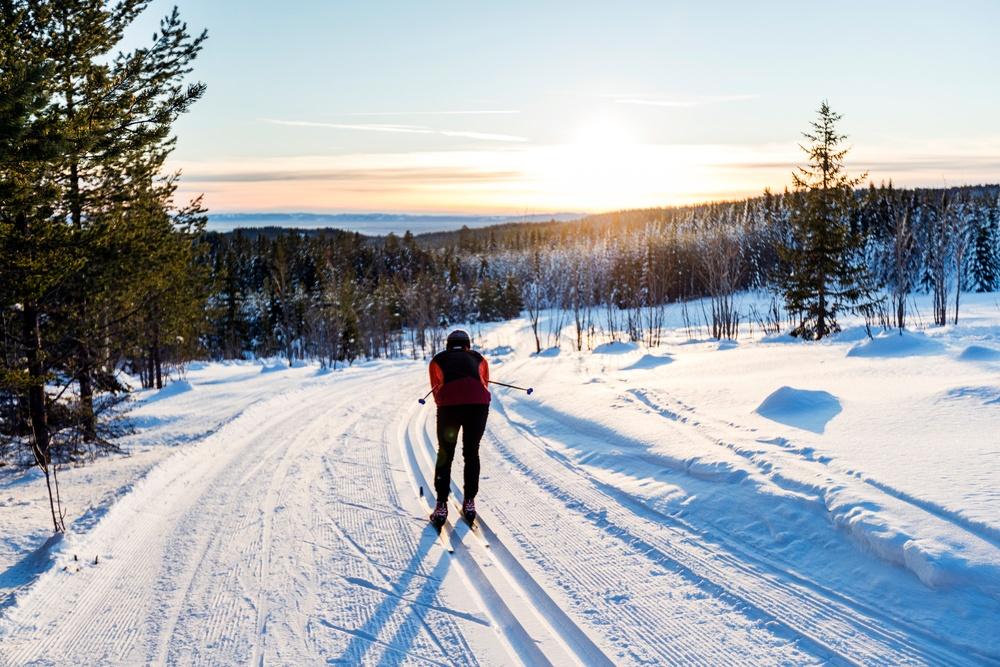 Välj bland 100 km längdspår i Orsa Grönklitt just nu, här foto från Utsiktsspåret.
