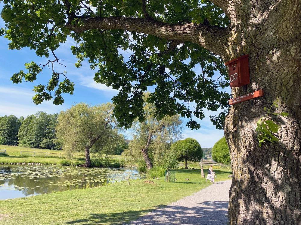 En röd fågelholk sitter på ett träd, i bakgrunden går en mamma och barn.