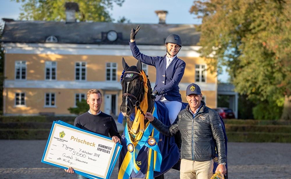 Mr Vain, fjolårets vinnare i femårshoppningen, ägd av Gustaf Johansson. riden av Victoria Almgren och Jeroen Dubbeldam var testryttare i klassen. Fotograf: Roland Thunholm