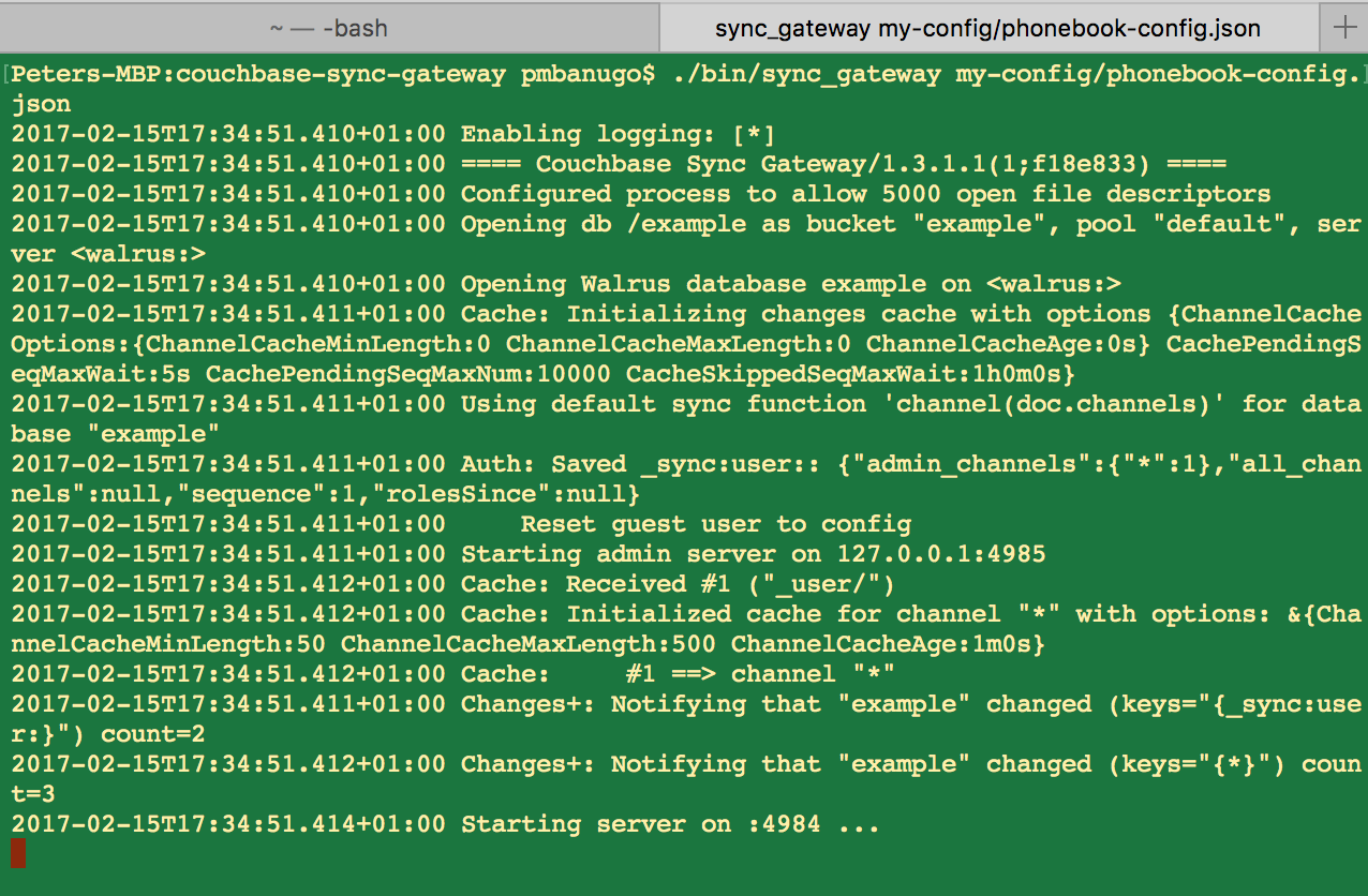 start sync gateway